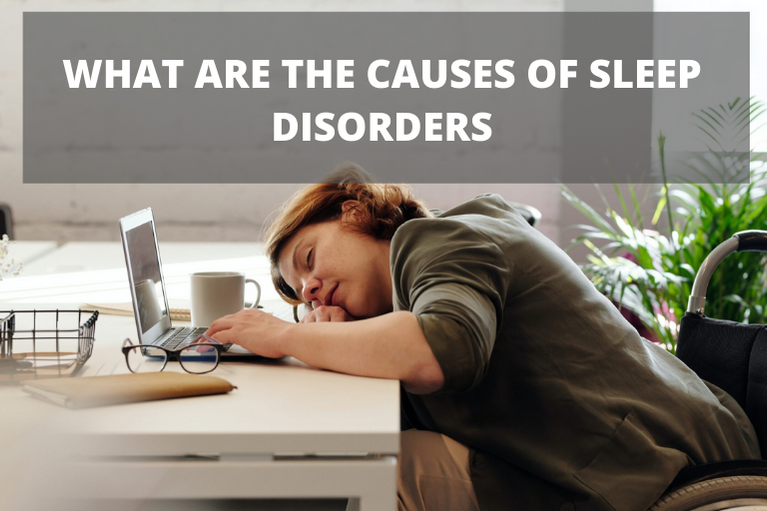 WHAT ARE THE CAUSES OF SLEEP DISORDERS